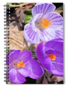 1st Flower In Garden 2010 Photo Spiral Notebook