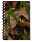 1st Lily Of Spring Spiral Notebook