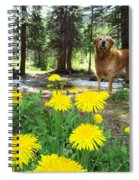 1st Trip Of The Summer Spiral Notebook