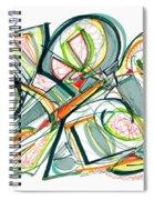 2010 Abstract Drawing Seventeen Spiral Notebook