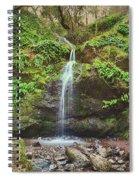 A Little Bit Of Love Spiral Notebook