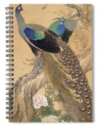 A Pair Of Peacocks In Spring Spiral Notebook