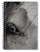 A37 Spiral Notebook