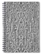 Abstract Black And White  Spiral Notebook