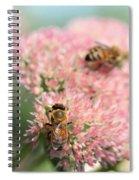 2 Bees Spiral Notebook