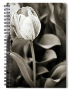 Black And White Tulip Spiral Notebook