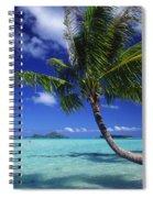 Bora Bora, Palm Tree Spiral Notebook
