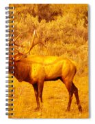 Bull Elk Calling Out Spiral Notebook