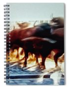 Bull Run Spiral Notebook