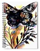 Butterfly Sketch Spiral Notebook