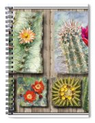 Cactus Collage Spiral Notebook