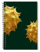 Chamomile Spiral Notebook