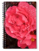Close-up Of Pink Flowers In Bloom Spiral Notebook