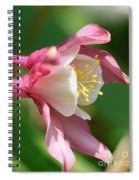 Columbine From The Songbird Series Named Robin Spiral Notebook