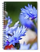 Cornflower Spiral Notebook