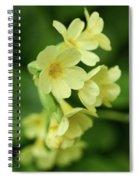 Cowslip Spiral Notebook