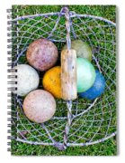Croquet Balls Spiral Notebook