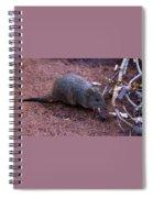 Cute Little One Spiral Notebook