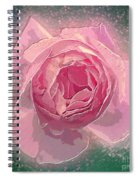 Digitally Manipulated Pink English Rose  Spiral Notebook