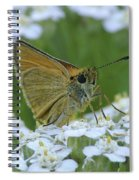 Dion Skipper Yarrow Blossoms Spiral Notebook