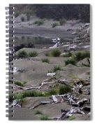 Driftwood On The Beach Spiral Notebook