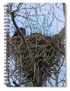 2 Eagles On Nest  3172b  Spiral Notebook