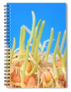 Early Corn Development, Zea Mays Spiral Notebook