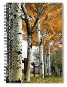 Fenceline Of Fall Aspens Spiral Notebook