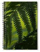 Fern Abstract Spiral Notebook