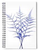 Fern, X-ray Spiral Notebook