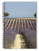 Field Of Lavender. Provence Spiral Notebook
