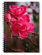 Flora No. 2 Spiral Notebook