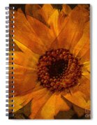 10449 Flower Spiral Notebook