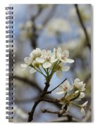 Flowering Trees Spiral Notebook