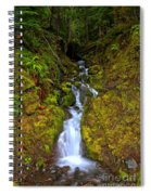 Streaming In The Olympic Rainforest Spiral Notebook