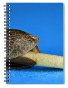 Germinating Marijuana Seed, Cannabis Spiral Notebook