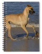 Giant And Tiny Dogs Spiral Notebook