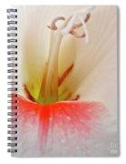 Gladiolus Spiral Notebook
