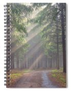 God Beams - Coniferous Forest In Fog Spiral Notebook