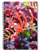 God's Handiwork Spiral Notebook