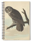 Great Cinereous Owl Spiral Notebook