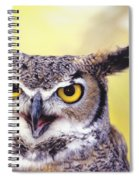 Great Horned Owl Spiral Notebook