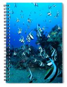 Hawaiian Reef Scene Spiral Notebook