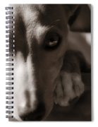 Heart You Italian Greyhound Spiral Notebook