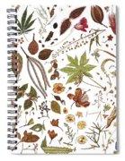 Herbarium Specimen Spiral Notebook
