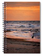 2 Herons On The Beach Spiral Notebook