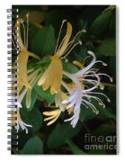 Honeysuckle Vine Spiral Notebook