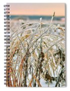 Ice On Branches Spiral Notebook