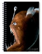 Johnsons Abyssal Seadevil Spiral Notebook