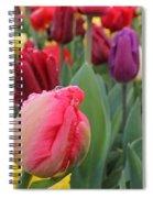 Keukenhof  Spiral Notebook